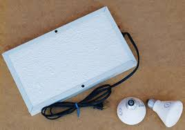 Reptile Heat Lamps Safety by Heating And Cooling Reptiles And Amphibians