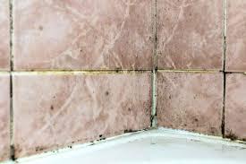 Humidity Sensing Bathroom Fan Wall Mount by Bathroom Exhaust Fan Basics Best Pick Reports