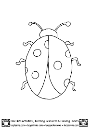 Animal Outlines To Print