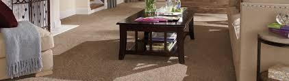 Carpets Plus Color Tile by Gainesville Carpets Plus Colortile Gainesville Fl Us 32653