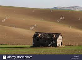 An Old Barn In The Palouse Near Rosalia, Washington, USA Stock ... Pin By Cory Sawyer On Make It Home Pinterest Abandoned Cars In Barns Us 2016 Old Vintage Rusty A Gathering Place Indiego Red Barn The Countryside Near Keene New Hampshire Usa Stock The Barn Journal Official Blog Of National Alliance Classic Sesame Street In Bq Youtube Weathered Tobacco Countryside Kentucky Photo Fashion Rain Boots Sloggers Waterproof Comfortable And Fun Red Wallowa Valley Northeast Oregon Wheat Fields Palouse Washington