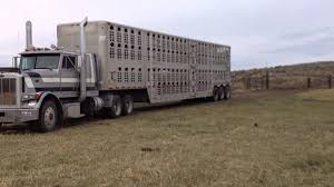 Semi Trailer Rolls Into Pasture To Unload Cows - YouTube 2008 Kenworth T800 Oil Field Truck For Sale 16300 Miles Sawyer Mack Trucks Wikipedia Midway Ford Center New Dealership In Kansas City Mo 64161 Commercial Rental Nikola A Tesla Competitor Scores Big Electric Truck Order From 2019 E350 Kuv Valley Fab And Repair Pin By Us Trailer On Pinterest Moving Rentals Budget 9400 Archives Sunday