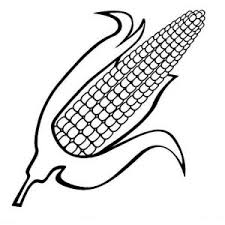Sweet Corn Coloring Page