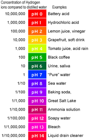 100 Ph Of 1 CTE Online Resources PH Scale Example
