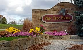 Weekend Getaway Guide: Wooster And Wayne County, Ohio | Ohio Girl ... Ricciardis Tree Farm A Family Tradition Since 1984 Looking For A Christmas Tree Life Culture News Pine Barn Signature Series Wound Warrior Project The Daily Record Ohio Find It Here Christmas Farms In Ohio Rainforest Islands Ferry Wooster Oh Summer 16 Pinterest Catchy Collections Of Fabulous Homes Treehouses Mohicans Rustic Wedding Venue House Will Moses Gallery Green Acres