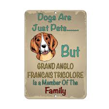 Amazoncom GRAND ANGLO FRANCAIS TRICOLORE DOG Dogs Just Pets But