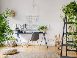 pflanzen im wohnzimmer schaffen ein ideales raumklima