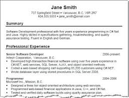Resume Summary Sample Template Example Executive With