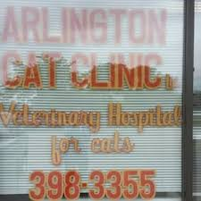 arlington cat clinic arlington cat clinic 23 photos 36 reviews veterinarians
