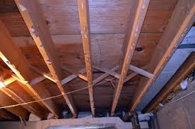 Vca Cacoosing Sinking Spring by 28 Tji Floor Joist Bridging Roofs How To Build A Passivhaus