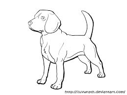 Dog Breed Coloring Pages Beagle Printable 252375