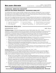 11 Recent Senior Business Analyst Resume Example