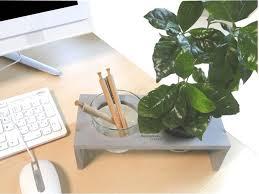 plante de bureau plante de bureau publicitaire un cadeau client spécial bien être