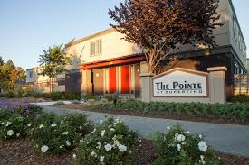 The Pointe At Cupertino Apartments For Rent - 19920 Olivewood St ... Running My Second Job And Passion September 2013 Graff For Creativity Overcoming Obstacles More Silicon Valley Toddler Beyond The Sv Holiday Online Bookstore Books Nook Ebooks Music Movies Toys 2014 Hiking With Brother Weny News Local Choral Group Looking Dations To Keep Pointe At Cupertino Apartments Rent 19920 Olivewood St Bookstores Yahoo Search Results Select Barnes Noble Stores Hosting Art Artifacts Release Event Valor Media Llc Upcoming Events Students Face Off In Battle Of The Columbia County Newstimes