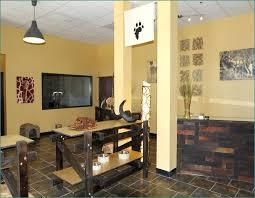 Safari Living Room Decorating Ideas by Safari Living Room Decor Home Design Ideas