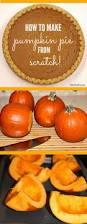 Worlds Heaviest Pumpkin Pie by Scratch Pumpkin Pie Recipe Pumpkin Pies Pies And Learning