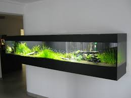 218 Best The Planted Aquarium Images On Pinterest | Planted ... I Really Want A Jellyfish Aquarium Home Pinterest Awesome Fish Tank Idea Cool Ideas 6741 The Top 10 Hotel Aquariums Photos Huffpost Diy Barconsole Table Mac Marlborough Tank Stand Alex Gives Up Amusing Experiments 18 Best Fish Images On Aquarium Ideas Diy Clear For Life Hexagon Hayneedle Bar Custom Tanks Ponds Designs For Freshwater Modern 364 And Tropical Ov Cylinder 2