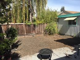 Fixed Up The Small Backyard In My New House - Album On Imgur My Backyard Garden Nation Of Islam Ministry Agriculture Super Groovy Delicious Bite Big Lizard In My Back Yard Erosion Under Soil Backyard Ask An Expert I Think Found Magic Mushrooms Wot Do This Video Is Hella Clickbait Youtube Dinosaur Storyboard By 100142802 Holes In The Best Home Design Ideas Cottage Months Ive Been Creating More Garden Rooms Cat Frances Aggarwal Backyards Terrific Rocks And Minerals Tree Growing Started Fruiting Can Someone Id