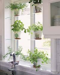 Best 25 Kitchen window shelves ideas on Pinterest
