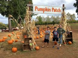 Pumpkin Patch Reno by Boa Vista Orchards Open Year Round At Apple Hill