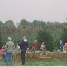 Wadsworth Ohio Christmas Tree Farm by April Thru October Galehouse Tree Farm