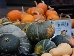 What Kinds Of Pumpkins Are Edible by Best 25 Squash Varieties Ideas On Pinterest Pea Trellis