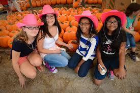 Pumpkin Patch Festival Sarasota by Fruitville Grove Pumpkin Festival