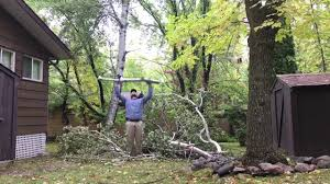 Johnny Cash - Lumberjack At Grand Beach, Manitoba - YouTube Detail Of Young Man Chopping Wood In His Backyard Stock Photo 6158 Nw Lumberjack Rd Riverdale Mi 48877 Estimate And Home Only Best Budget Tree Service Changs Changes Our Is One Loading Wood Logs To Wheelbarrow Video Landscape Lumjacklawncare Twitter Amazoncom Camp Chef Overthefire Grill With Sturdy The Urban Sturgeon County Bon Accord Gibbons Bash Themed Cookies Pinterest Inside The Quest To Become Greatest World Cadian Show Epcot Youtube