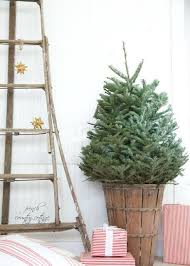1294 Best BEST Christmas Decor Ideas Images On Pinterest