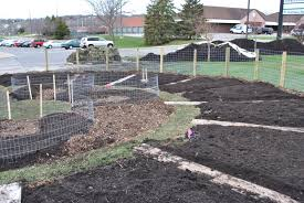 Garden Design: Garden Design With Permaculture Vegetable Garden ... Thriving Backyard Food Forest 5th Year Suburban Permaculture Bill Mollison Father Of Gaenerd 101 Pri Cold Climate Archives Chickweed Patch Garden Design With Permaculture Kitchen Herb Spiral Backyard Orchard For The Yards Pinterest Orchards Australian House Garden January 2017 Archology Download Design And Ideas Gurdjieffouspenskycom Sustainable Farm Future Best 25 Ideas On Vegetable Youtube