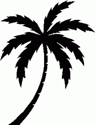 Palm Tree Clipart Black And White No Background