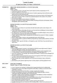 Technical Account Manager Resume Example | Linkv.net 86 Resume For Account Manager Sample And Sales Account Manager Resume Sample Platformeco 10 Samples Thatll Land You The Perfect Job Template Ipasphoto Write Book Report For Me Buy Essay Of Top Quality Google Products Best Example Livecareer Hairstyles Sales Awe Inspiring Inspirational Executive Atclgrain Newest Cv Brand Marketing