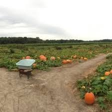 Pumpkin Patch Denver Pa mr pepper u0027s pumpkin patch fruits u0026 veggies 13500 laurel rd