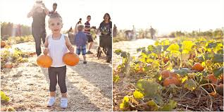 Underwood Farms Pumpkin Patch Hours by Underwood Family Farm Pumpkins U2013 This Mom U0027s Gonna Snap
