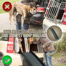 Perfect Life Ideas Pet Ramp For Car SUV Truck Boat - Folding ... Dog Ramps Light Weight Folding Traders Deals Online Petstep Benefits Prevents Back Strain From Lifting A 30 Pound Dog Alinum Youtube Stair Ideas Invisibleinkradio Home Decor Pet Gear Full Length Trifold Ramp Chocolate Black Chewycom Amazoncom Petsafe Solvit Waterproof Bench Seat Cover Bed Truck 2019 20 Top Upcoming Cars Mim Safe Telescoping Dogtown Supply Beds Traing Cat Products Easy Animal Deluxe Telescopic Smart Petco In Gourock Inverclyde Gumtree