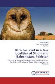 Barn Owl Diet In A Few Localities Of Sindh And Balochistan ... Barn Owl Eating Mouse Sussex Uk Tyto Alba Stock Photo Royalty Bird Of The Month Owl Barn A Free Image 51931121 How To Attract Owls Your Yard 1134 Best Birdsstrigiformesowls Images On Pinterest Wikipedia Facts Pictures Diet Breeding Habitat Behaviour Eating Picture And 1861 Owls Snowy Saw Whets Chick Raptor Conservancy Virginia Baby And Animal