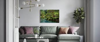 calm zen lake and bonsai trees in tokyo garden