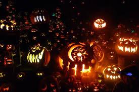 Roger Williams Pumpkin by Jack O U0027lantern Spectacular Sonew