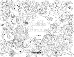 Edible Paradise A Coloring Book Of Seasonal Fruits Vegetables And Plants