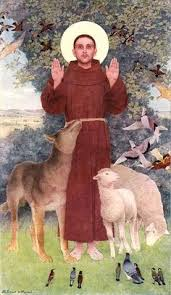 st francis of asisi st francis of assisi patron of animals