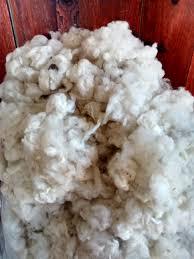 Zipit Beddingcom by Wool Flake Price Decrease