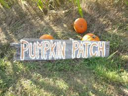 Jacksonville Nc Pumpkin Patch by Fall Activities In Kitsap County Pumpking Patches Mazes