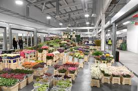 Waterflow Works to keep New Covent Garden Market Fresh