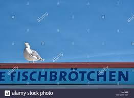 100 Seabirds Food Truck Eckernforde Deutschland 23rd Sep 2019 23092019 A