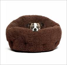 Furniture Amazing Diy Chew Proof Dog Bed Indestructible Dog Bed