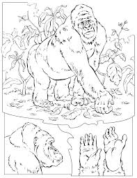 More Images Of National Geographic Coloring Pages
