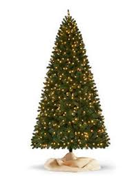 Nordmann Fir Christmas Tree Nj by Find All Types Of Christmas Trees At The Home Depot