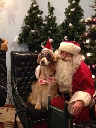 Christmas Tree Shop So Portland Maine by Sleighbells Farm U0026 Gift Shop Home Facebook