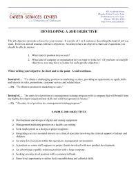Marketing Resume Objectives Examples