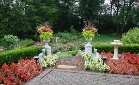 Wax Begonia Garden